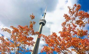 Torre de Toronto